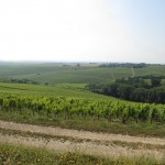 Vinmarker i Chablis